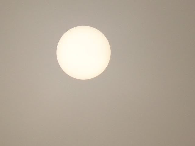 Closeup of the blank sun. Photo by Bobby Coggins