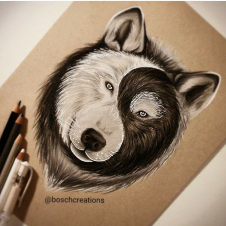 Wolf Yin Yang Tattoo Meaning Best Image Of Wolf Tripimagesco
