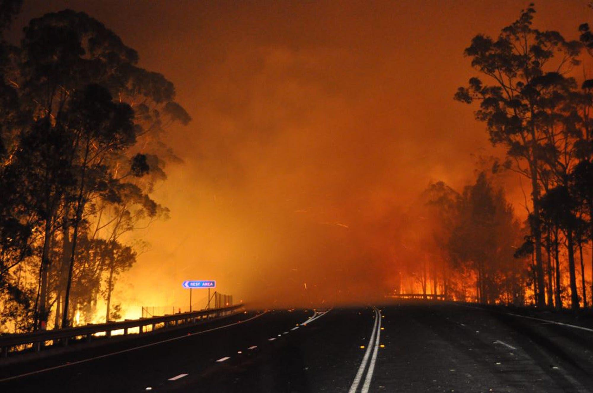 Wildfires Rage In Australia - Business Insider