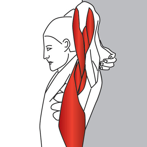 shoulder / ПЛЕЧИ stretching for pain relief  shoulder