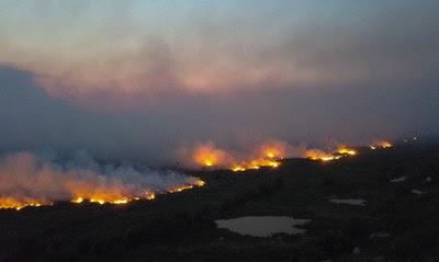 #pracegover: foto aérea mostra Pantanal queimando, com grandes labaredas e fumaça