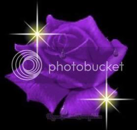 http://www.ningo.com.ar/images/flor_violeta.jpg