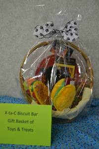 X-ta-C Toy and Treat Basket!