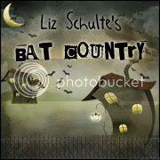 Liz Schulte's Bat Country