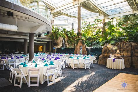 Flashback: Wedding at the PPG Aquarium in the Pittsburgh