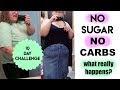Weight Loss No Sugar No Carb Diet