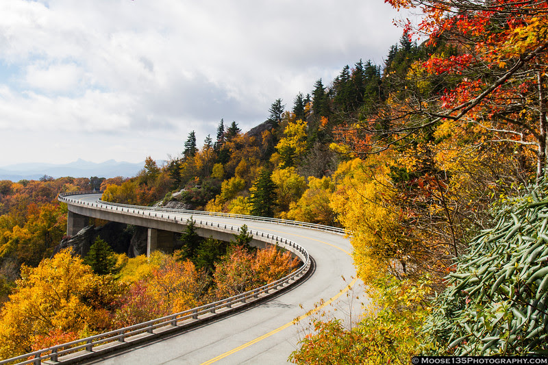 October 21 - Fall colors in full effect at the Linn Cove Viaduct on the Blue Ridge Parkway.