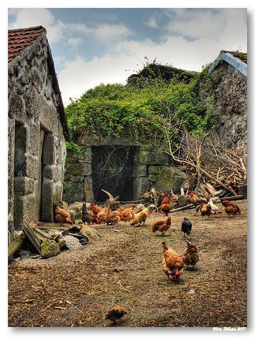Rural scene... by VRfoto