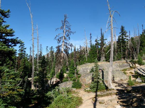Washington Pass, North Cascades National Park