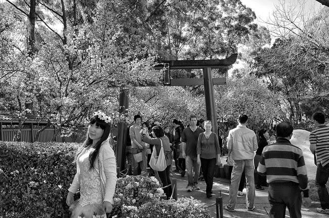 Auburn Botanical Garden 01