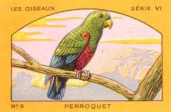 milliat oiseaux011