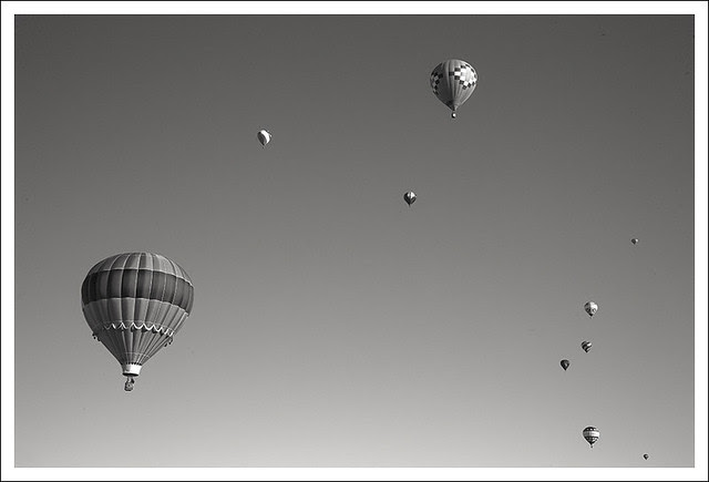 Great Forest Park Balloon Race 2013 7 BW