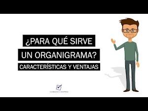 ¿Para que sirve un Organigrama? | Características y Ventajas
