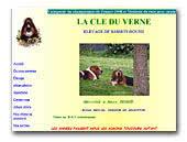 La Cle du Verne Basset Hound