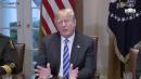 Trump calls some illegal immigrants 'animals'