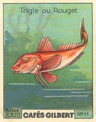 gilbert poissons 10