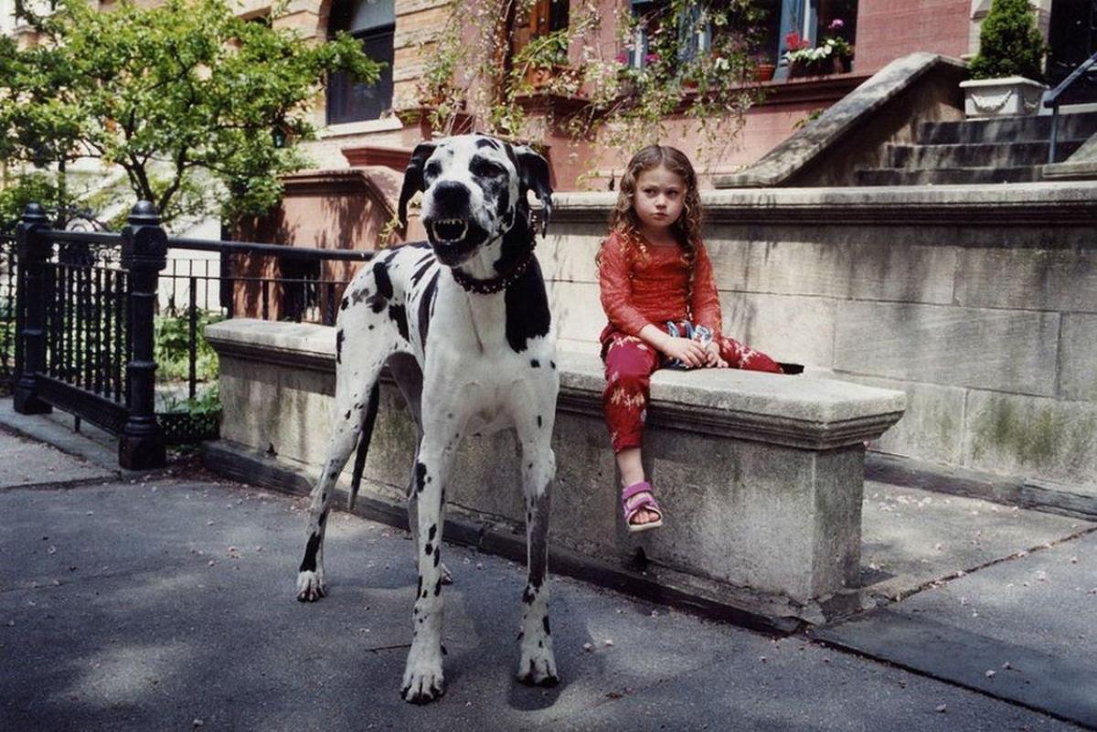 O Mundo de Amelia - A menina que cresceu com os animais e os considera seus irmãos 17