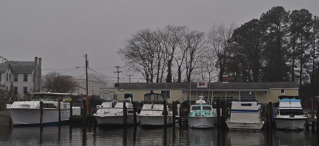 Tidewater Yacht Club