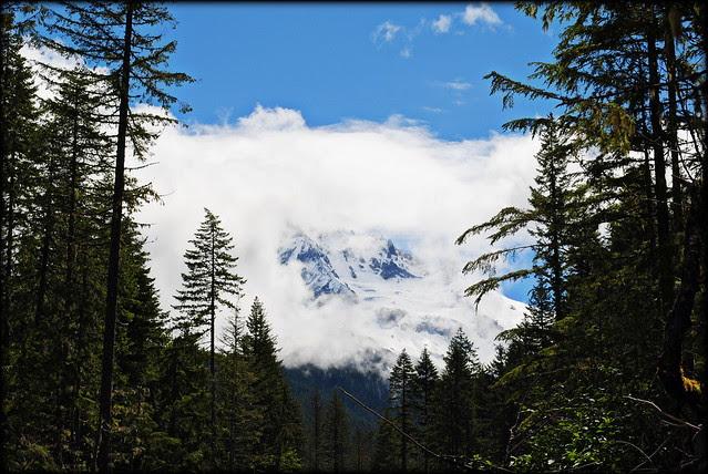 Mt. Hood from the Seasonal Bridge - Ramona Falls Trail - Mt Hood