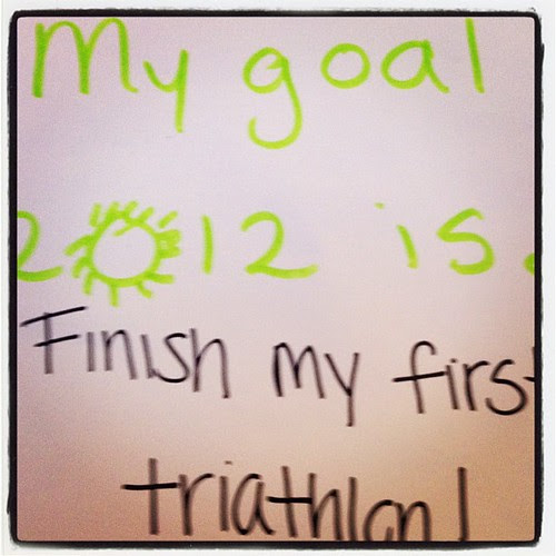 My goal for 2012 is...