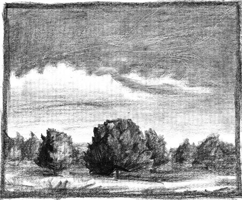 Trees under the sky pencil drawing by Gregory Avoyan