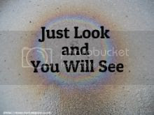 Just Look and You Will See