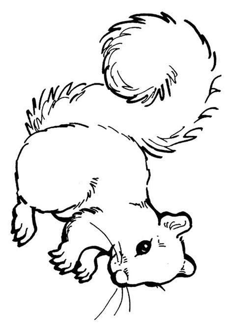 print coloring image bw images  color squirrel