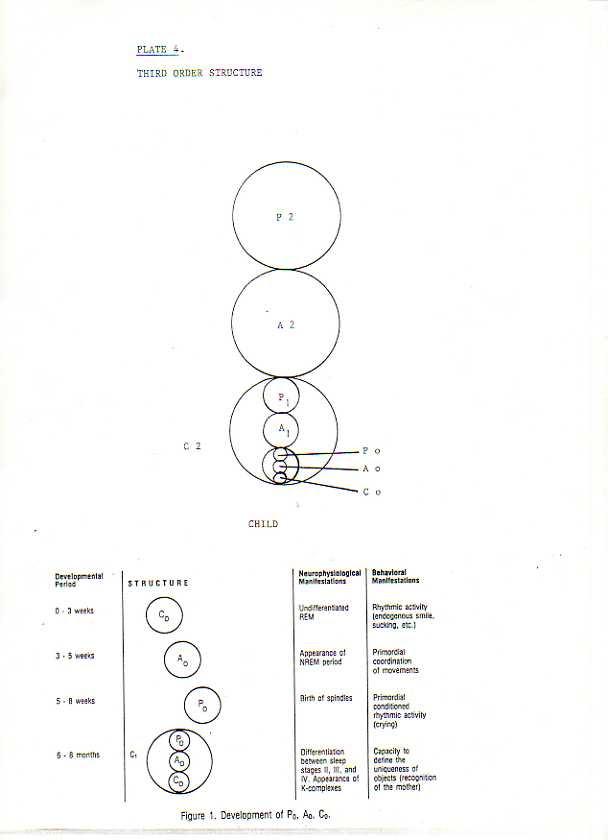 Third order structure - Child