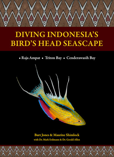 Diving Indonesias Birds Head Seascape