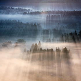 Rays by Marcin Sobas (MarcinSobas) on 500px.com