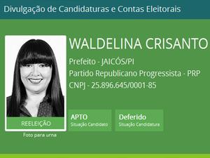 Candidata à reeleição amargou terceiro lugar  (Foto: TSE)