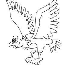 Dibujos Para Colorear águila Eshellokidscom