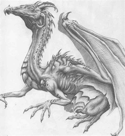 pencil drawings japanese dragon drawing  http