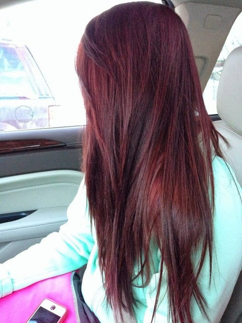 Beautiful Dark Hair Color Ideas - Hairstyles For Women 14-14
