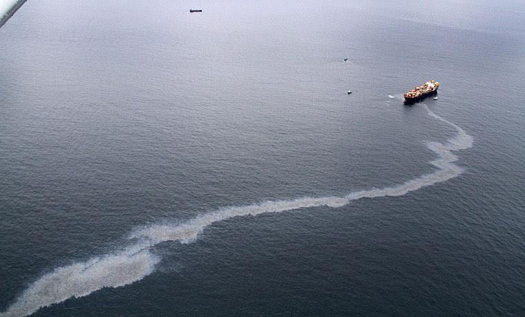 Ρένα πετρελαιοκηλίδα: στο Εξάντα Reef, κοντά Mt Maunganui, Νέα Ζηλανδία