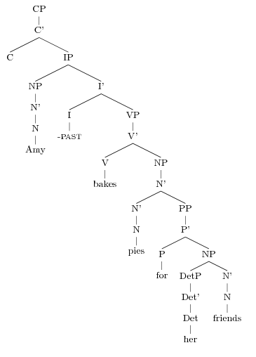 Drawing Sentence Syntax Trees Amy Reynolds