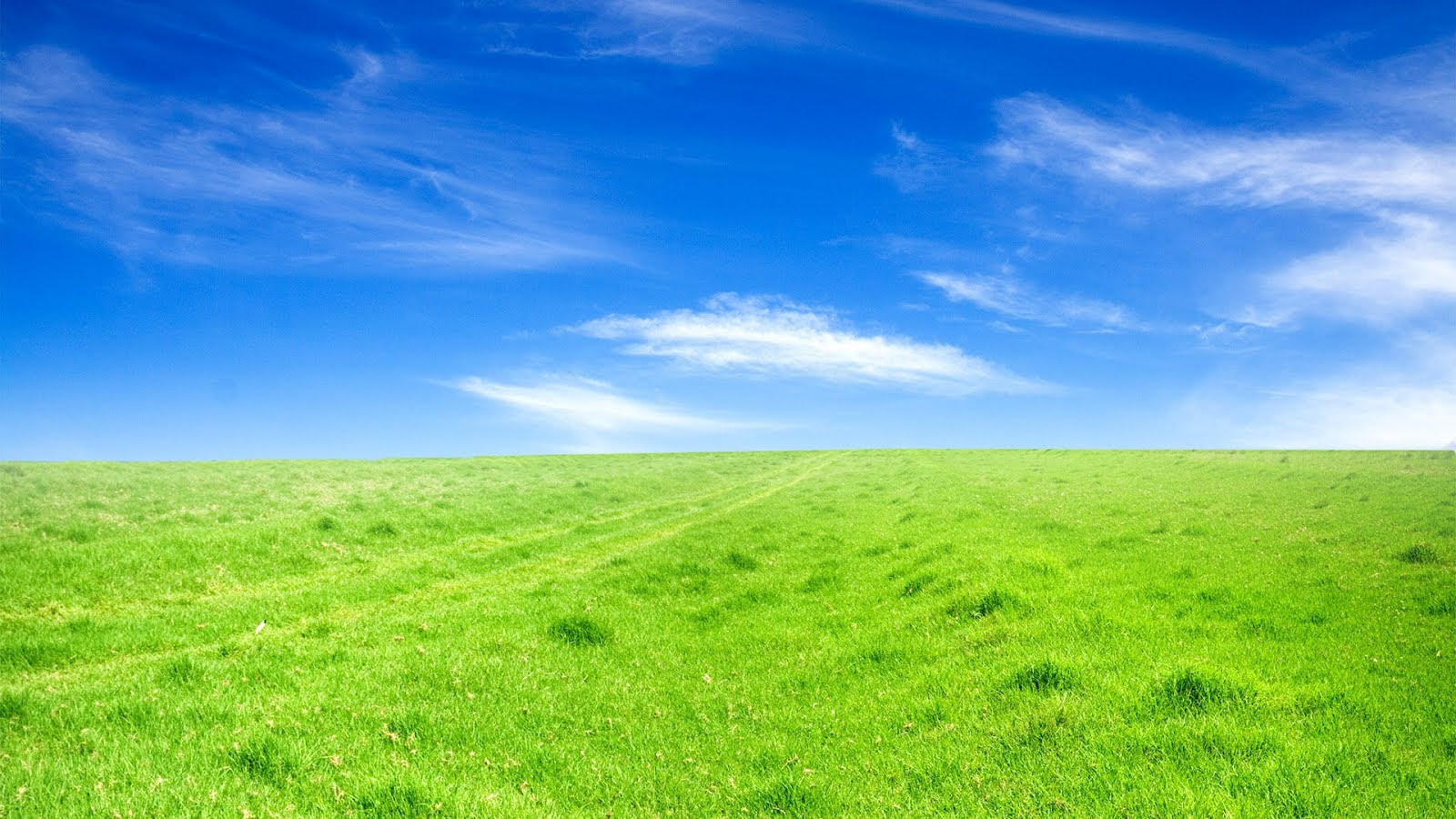 Sky Grass Field Free PPT Backgrounds for your PowerPoint ...