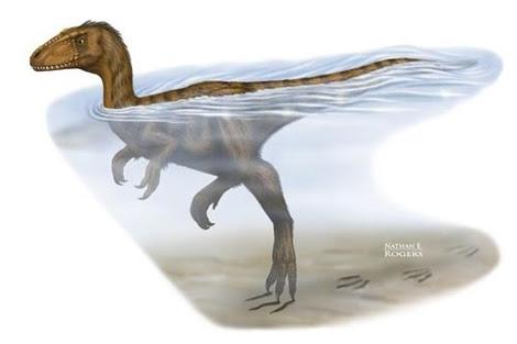 Recreación artística del dinosaurio nadador. | Nathan E. Rogers