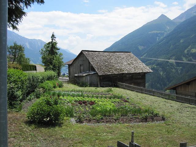 Køkkenhave i Zedlach