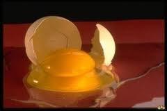 Как подобрать с пола разбившееся яйцо