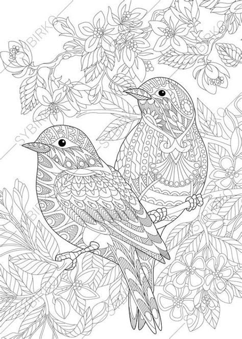 coloring pages  adults love birds spring flowers