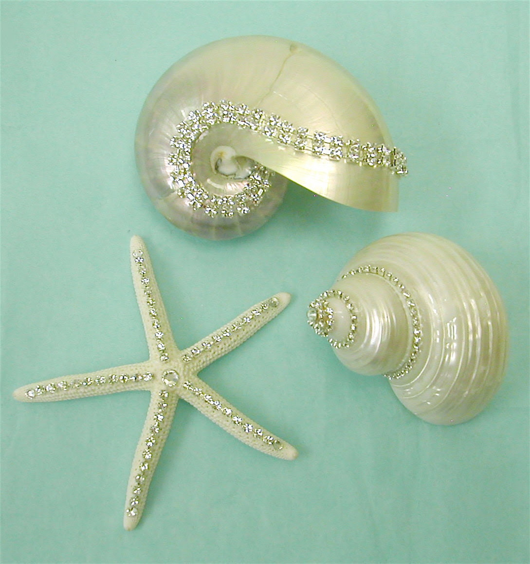 3 Crystal Studded Shells - Beach Decor Display