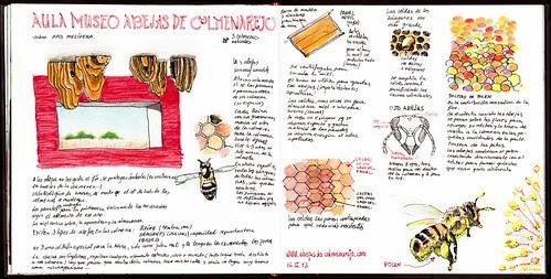 Aula Museo de abejas by aidibus