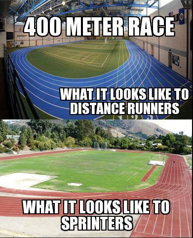 Quotes About Track And Field Runners 15 Quotes
