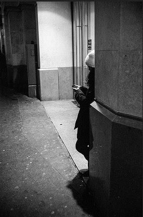 kot photographie