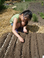 Olivia Planting Beans