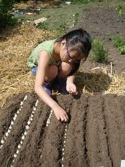Olivia Planting Beans