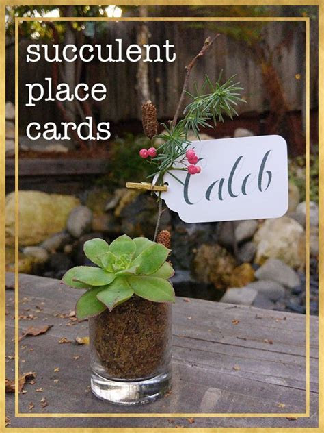 Easy Succulent Place Cards for Your Holiday Table ? Little