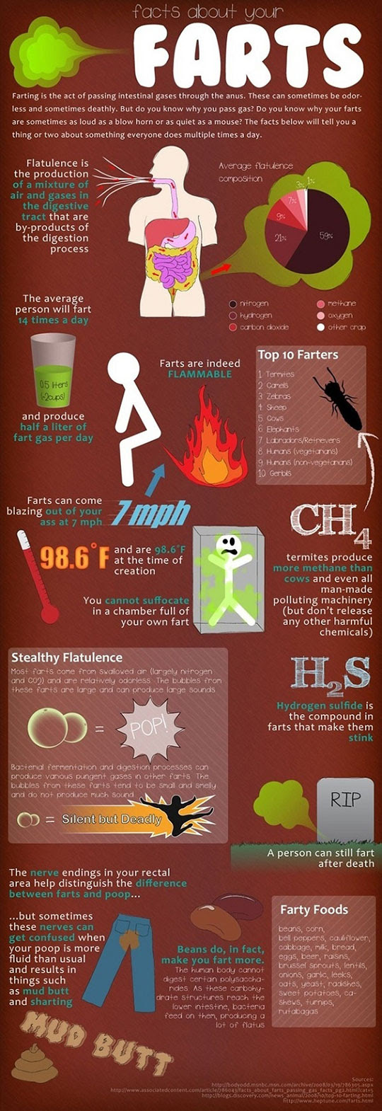 Different facts of fart in info-graphics