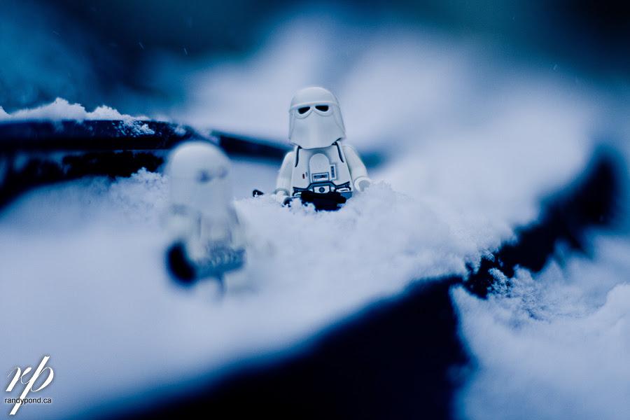 ~ 322/365 Snow Arrives ~